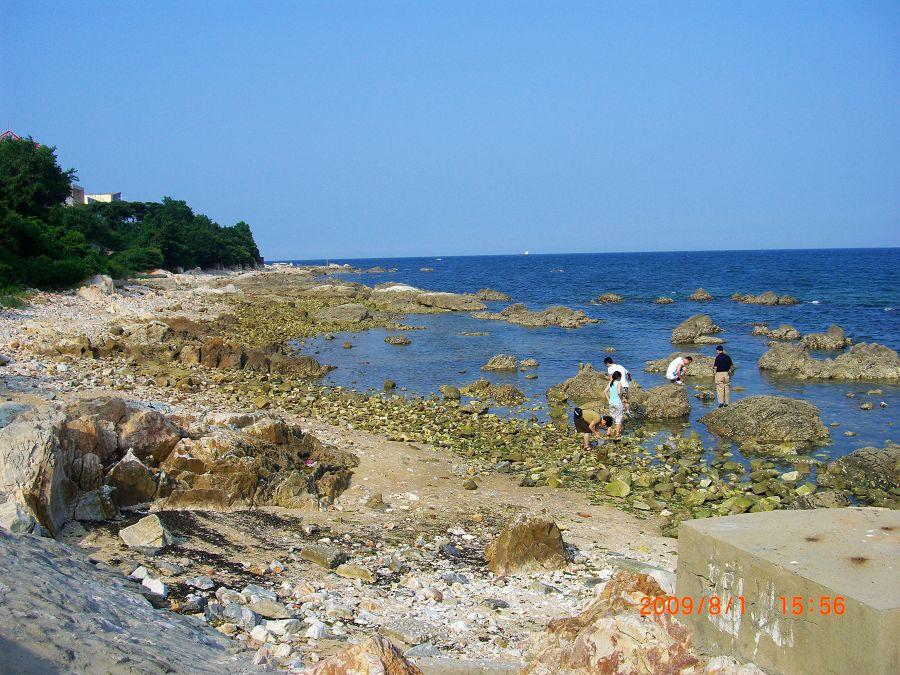 去了养马岛的海水浴场,人很多,于是姐夫领着我们来到
