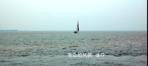 大海 波涛汹涌 小舟