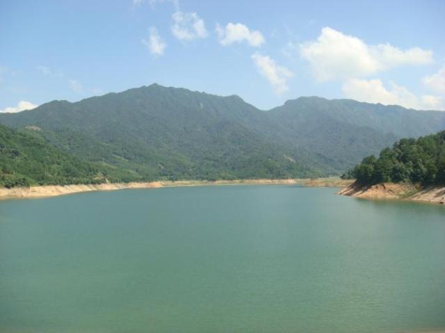 现在,我想你们介绍我家乡的绿和美吧!(被逼无奈.