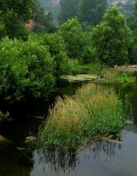 通往黑龙潭的山谷中,这样的秀美小景很多,只是远处水面上的两个游人