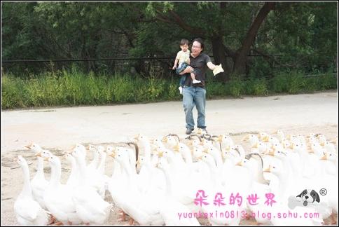 八达岭野生动物园 看图说话