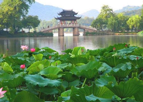 杭州-西湖-绿